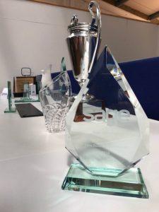 Sage 50 Customer Service Awards